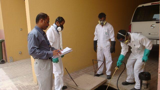 شركة-مكافحة-حشرات-ورش-مبيدات-بجدة
