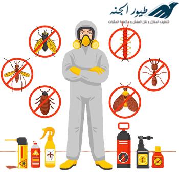 شركة مكافحة حشرات بابوظبي