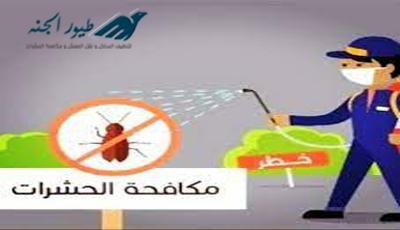 مكافحة حشرات بالفجيرة